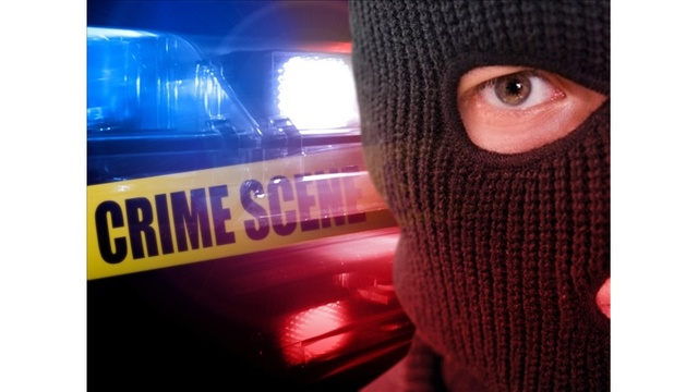 Topeka homeowner caught would-be burglar in the act
