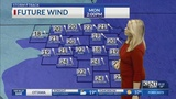 Not as cold tonight, warmer breezes for MLK Day