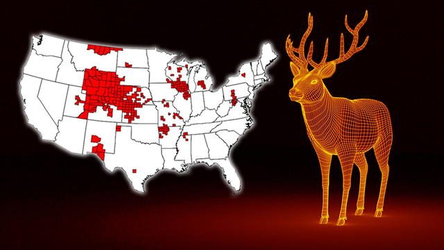 CDC fears 'zombie deer disease' spreading in Kansas could infect humans