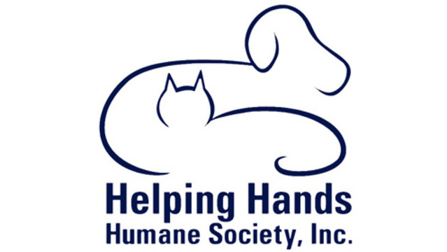 FINAL FUR: Helping Hands Humane Society offers March Madness promotion