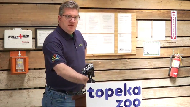 Zoo Director: Trainer in stable condition, 'no consideration' to euthanize attacking tiger