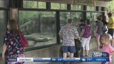 Zookeeper in intensive care one day after tiger attack at Topeka Zoo